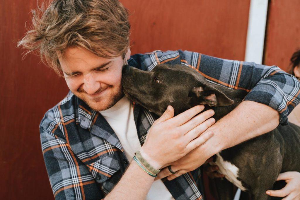 Own a dog in Australia