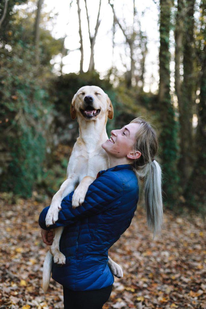 Socialize a rescue dog