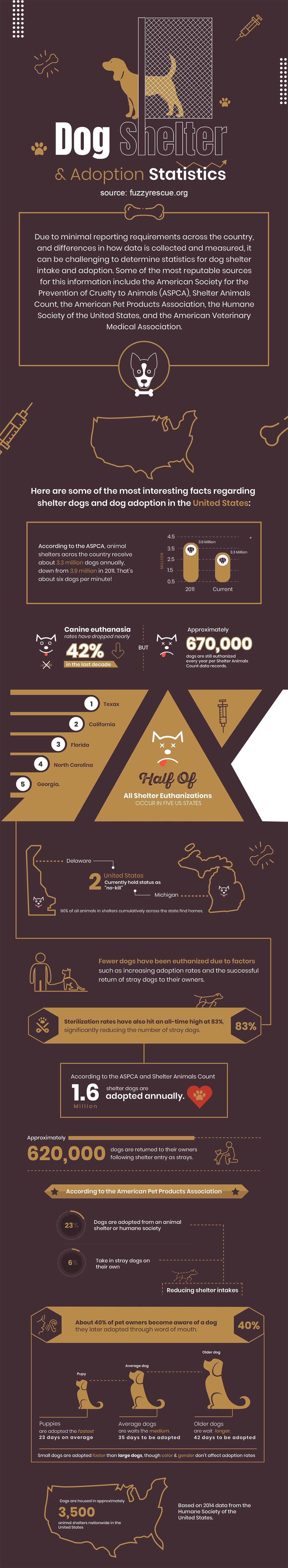 Dog Shelter Infographic 1