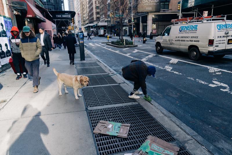 man picking up after dog poop